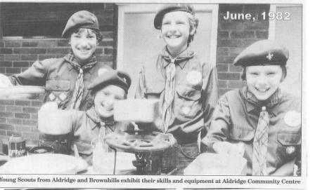 Scouts in 1982